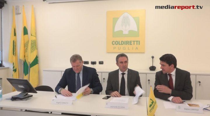 """Coldiretti vince la """"guerra del grano"""", dal 2018 etichettatura di origine sulla pasta"""