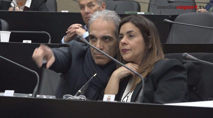 Consiglio regionale, il debutto con discrezione di Anita Maurodinoia