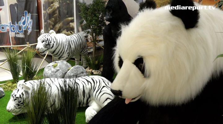 """""""Lo zoo che vorrei"""" esiste, è a BariBlu"""