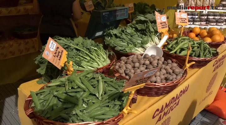 Agricoltura, Coldiretti Puglia: produzione in calo per clima pazzo e Xylella, bene l'Export