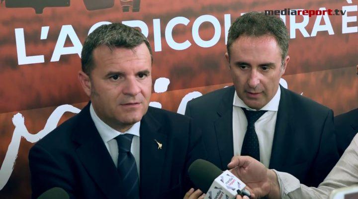 """Xylella,Centinaio: """"lanciare piano olivicolo nazionale"""""""