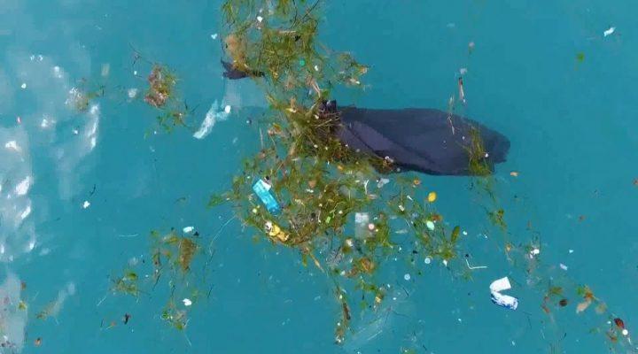 """Puglia, raccolta plastica in mare: accordo Regione – Corepla per """"pescare i rifiuti"""""""